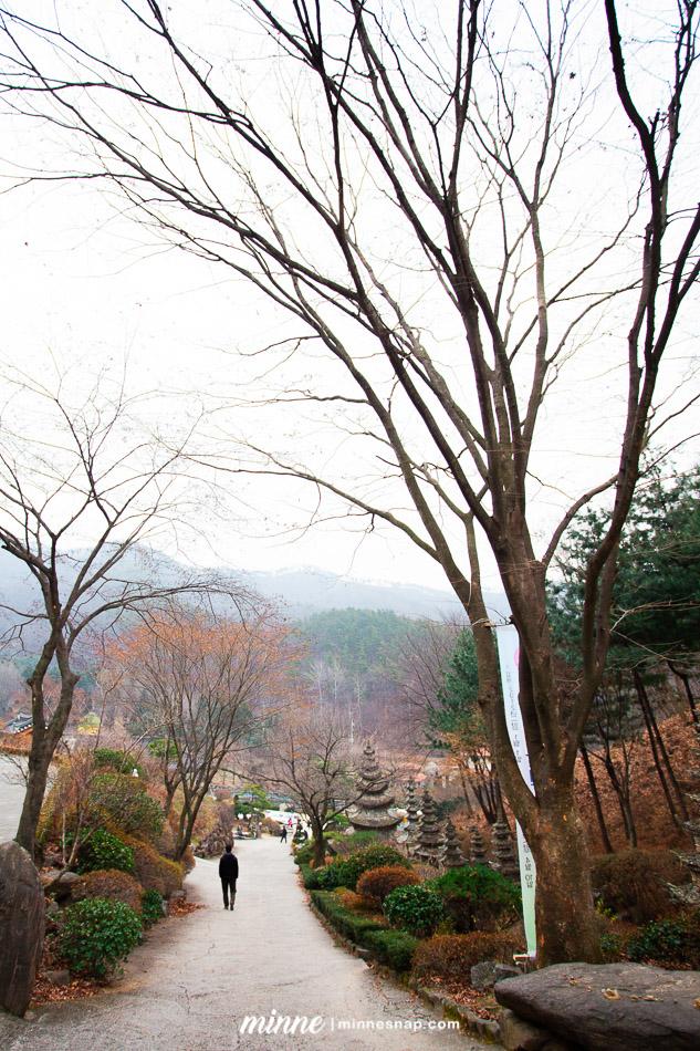 South Korea Photos Trip from 2011, Seoul, Nami island